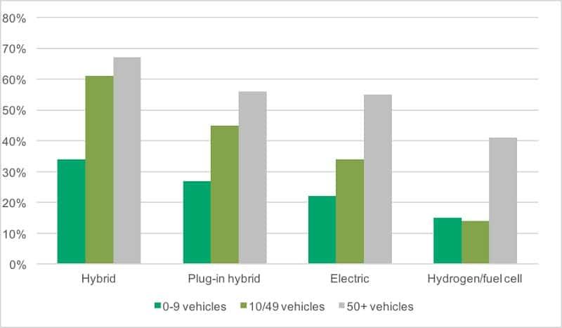 fleet popularity